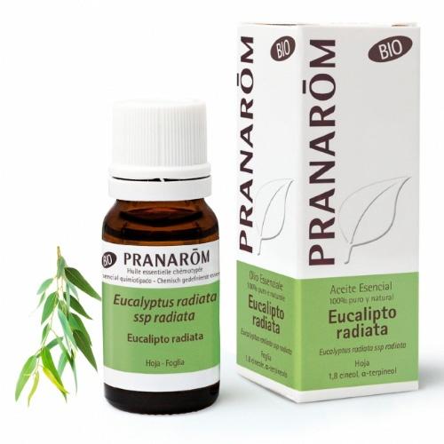 Pranarom aceite esencial eucaliptus radiata 10ml