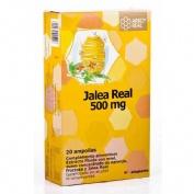 Arkoreal jalea real (50o mg 20 ampollas)